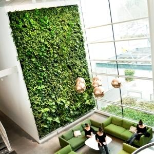 Vertical garden indoor plants